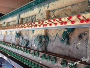 棚板のゴミ2